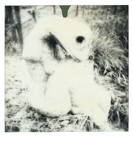 Pack 600 n&b, Impossible project 2015